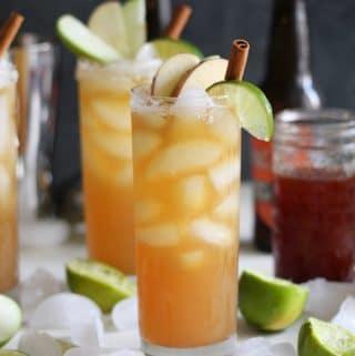 Apple Cider Pumpkin Ale Beergaritas