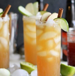 Apple Cider Pumpkin Ale Beergaritas