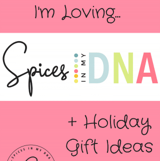Some Things I'm Loving + Holiday Gift Ideas!