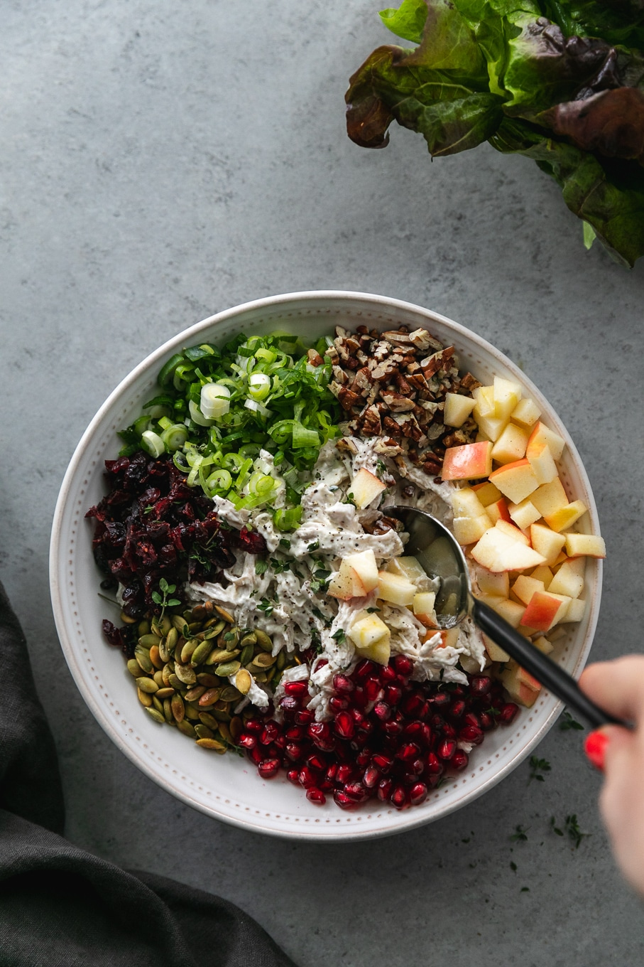 Overhead shot of a bowl of chicken salad topped with piles of chopped apple, pomegranate arils, toasted pepitas, dried cranberries, scallions, and toasted pecans with a hand stirring everything together