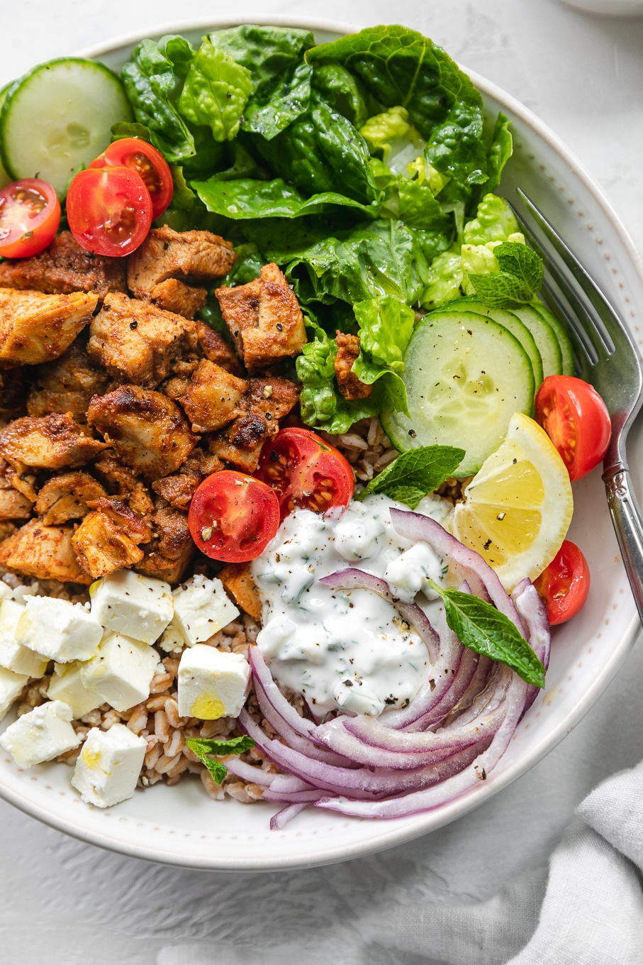 Overhead close up shot of a chicken shawarma bowl