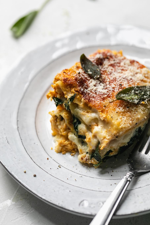 Close up shot of a piece of lasagna