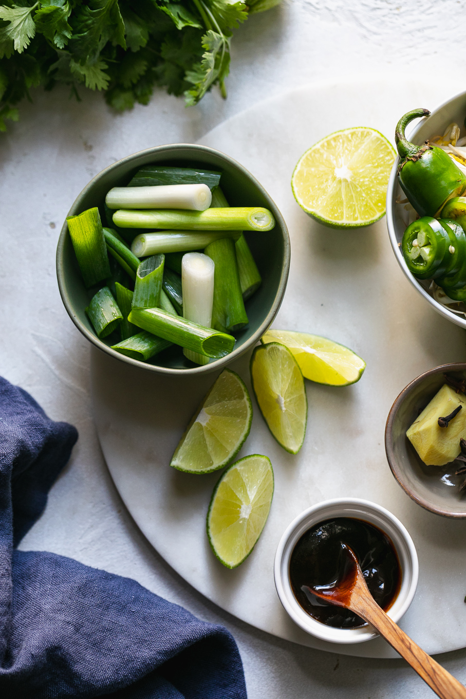 Overhead shot of scallions, lime wedges, ginger, sites, herbs, and hoisin sauce